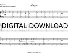 digital A1